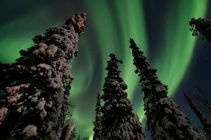 Northern Lights Tankavaara